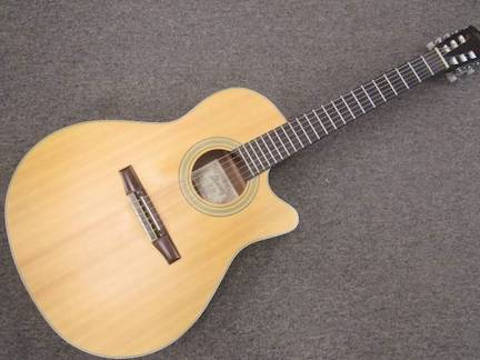 Ibanez AE20N Acoustic Electric Nylon Classical Guitar