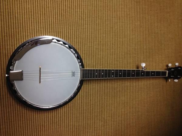 Rogue 5 string banjo and gig bag